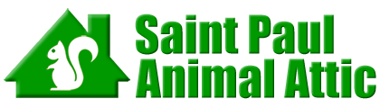 Saint Paul Animal Attic